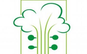 logo_somdamata_400x400